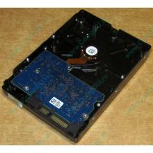 HDD 500Gb Hitachi HDS721050DLE630 донор на запчасти (Чехов)