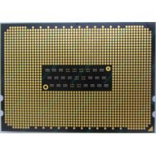 AMD Opteron 6128 OS6128WKT8EGO (Чехов)